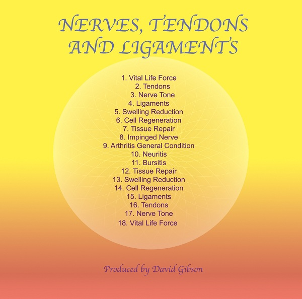 Nerves, Tendons and Ligaments (Immediate Download)